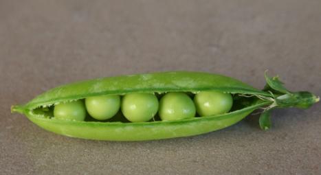five peas